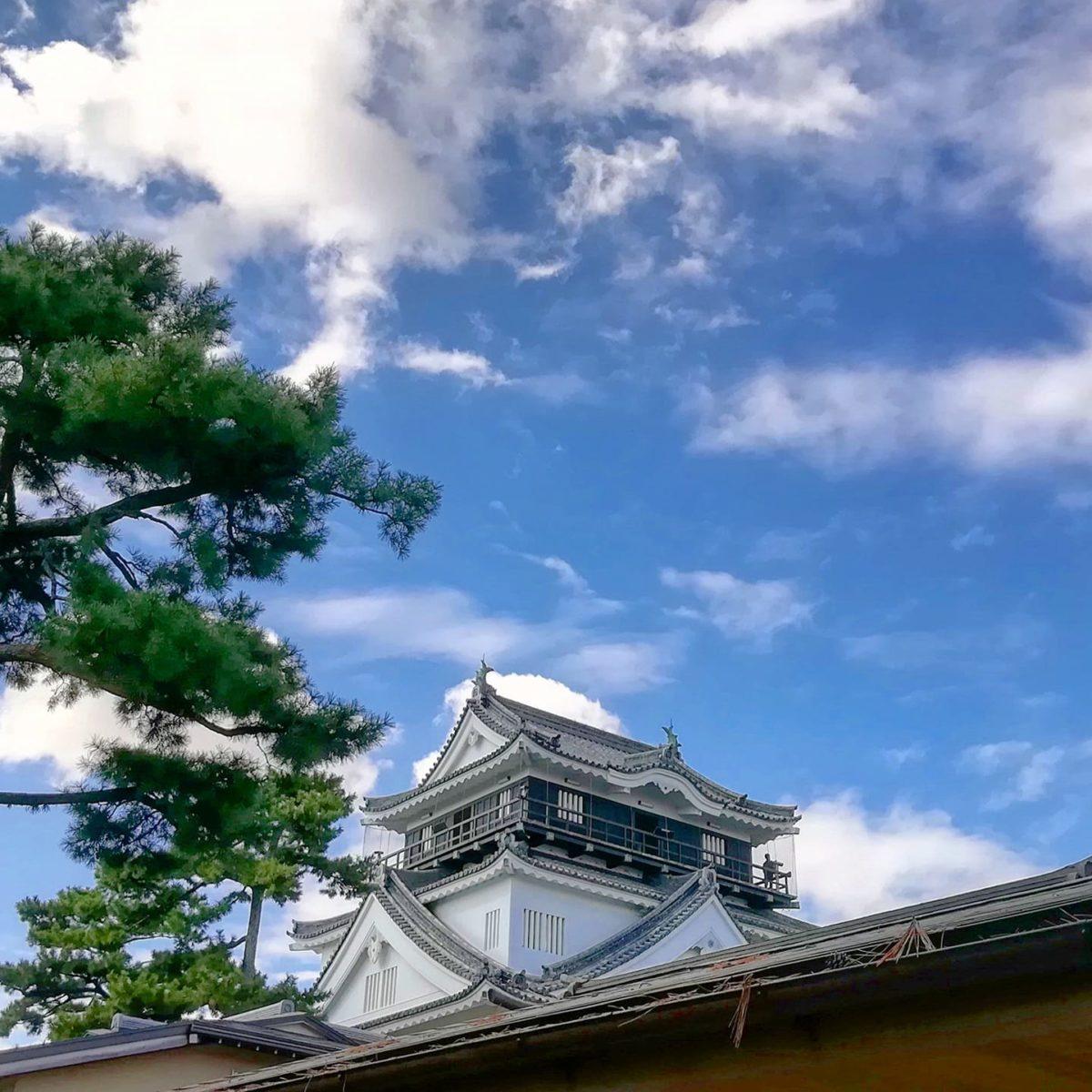 岡崎城へ 人混みを避けて近郊で過ごす