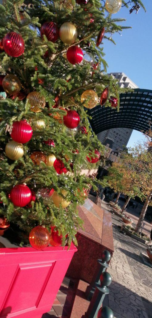 植物、木、花、屋外 恵比寿ガーデンプレイスのクリスマス