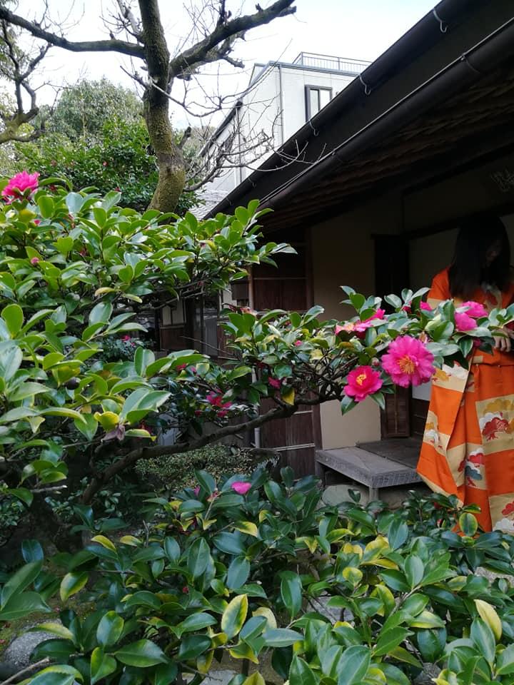 新春に旧東海道 有松 を散策する